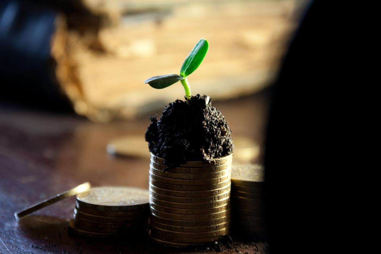 деньги рост монеты