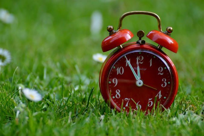 reloj rojo cesped