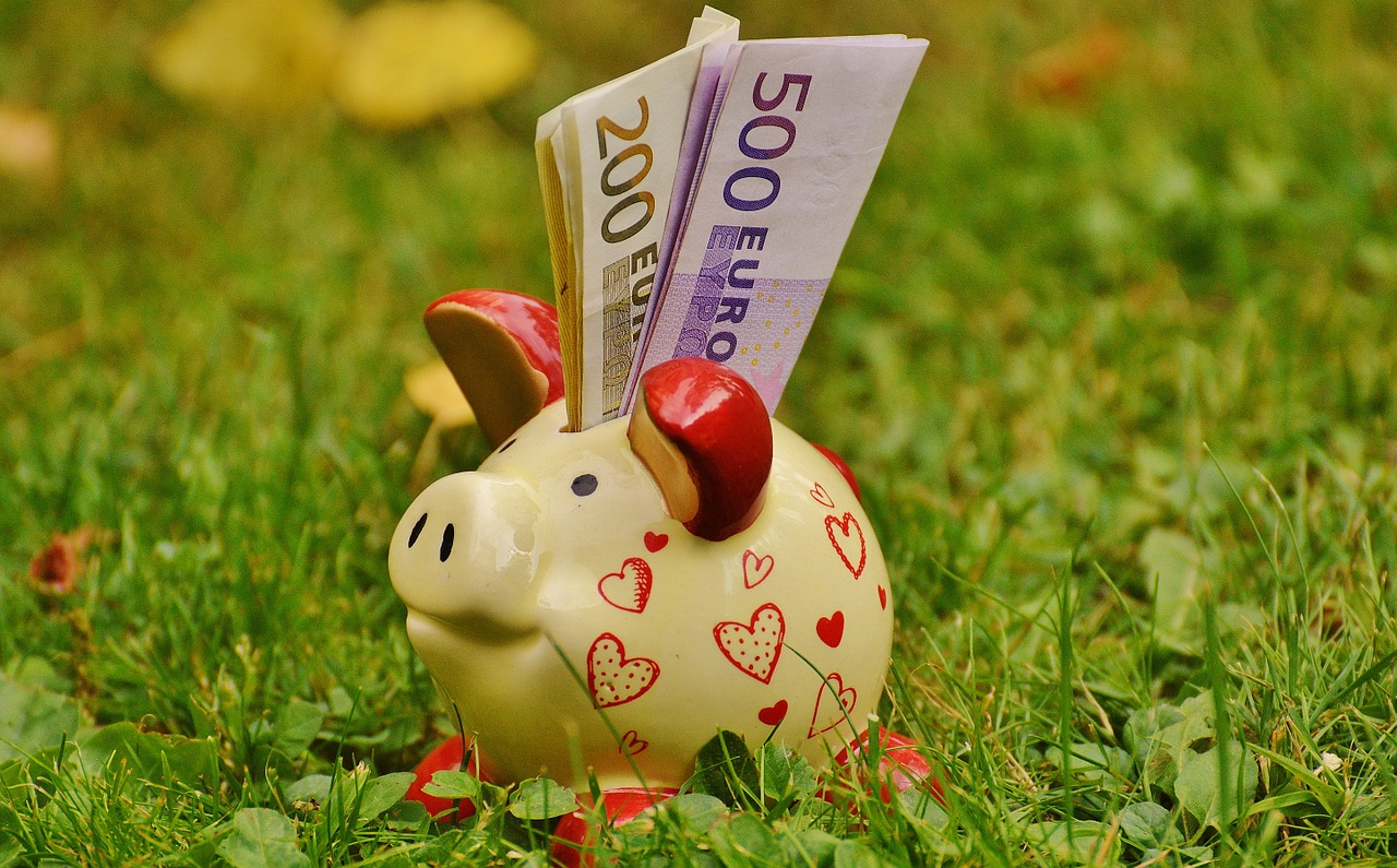 hucha dinero campo hierba