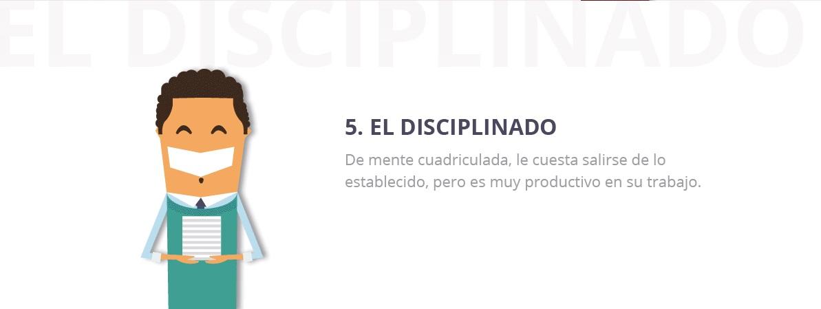 perfil disciplinado equipo trabajo