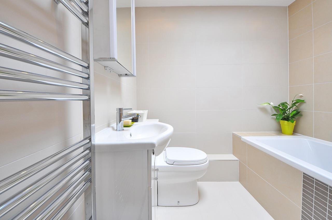 bano inodoro banera wc